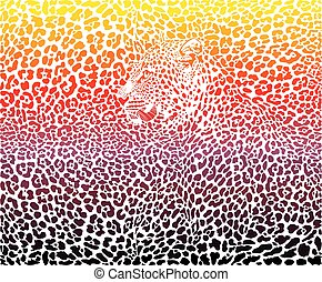 Leopard abstract background