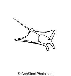 Manta Ray - Vector illustration : Manta Ray on a white ...