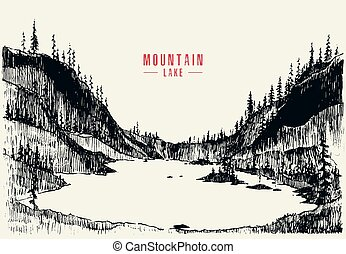 Vector illustration mountain lake pine forest draw