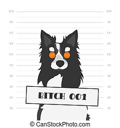 Mugshot of a Hard Faced Dog with Orange Round Glasses. Bitch as Female Dog of Black and White Border Collie.