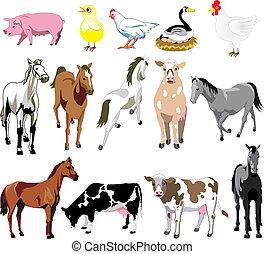 Vector Illustration of 14 Farm Animals birds, and mammals.