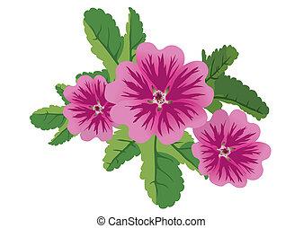 flowers malva - vector illustration of 3 flowers malva