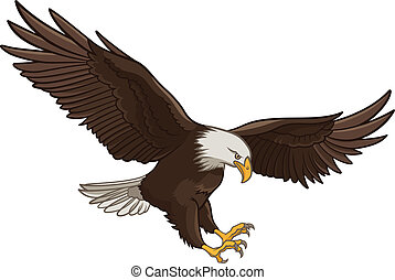 Eagle - Vector illustration of a Bald Eagle, isolated on a ...