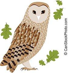 Vector Illustration of a Barn Owl
