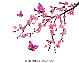 vector illustration of a branch with cherry blossoms