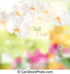 vector illustration of a branch with white orchids on a bright f