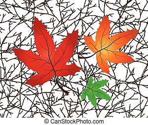 Vector Illustration of a Branch with maple leaves