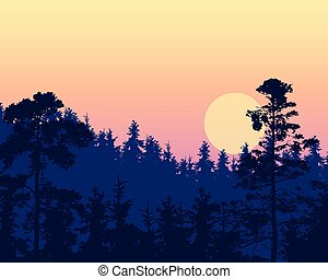 Vector illustration of a dense coniferous forest on a hill under a morning or evening violet sky with red and yellow sunrise - with space for text