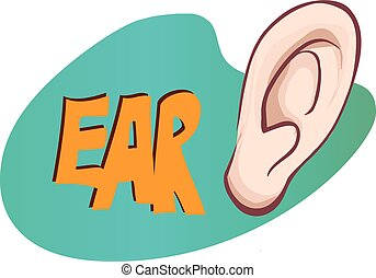 vector illustration of a ear