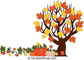 Vector illustration of a fall tree with leaves, orange and white pumpkins . Pumpkins are different sizes on white background.