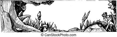 vector illustration of a forest glade stylized as engraving.