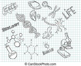 vector illustration of a hand drawn laboratory icon
