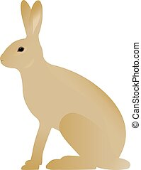 Vector illustration of a hare. Isolated on white background....