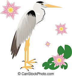 Vector Illustration of a Heron. Heron isolated on white...