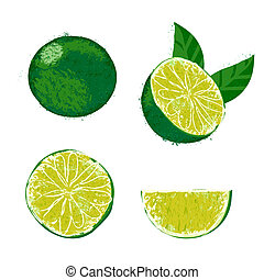 Vector illustration of a lime fruit. - Set of four images...