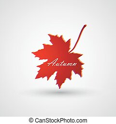 vector illustration of a maple leaf