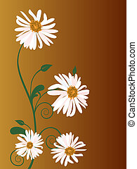 vector illustration of a marguerite on brown background