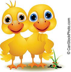 a pair of ducks in a friendly