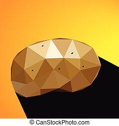 Vector illustration of a potato