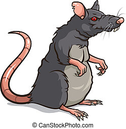 Rat - Vector illustration of a Rat isolated on a white...