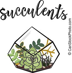 Vector illustration of a 'Succulents' poster