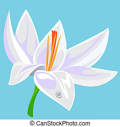 Vector illustration of  a waterlily