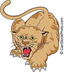 Angry Cougar