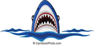 angry shark - vector illustration of angry shark