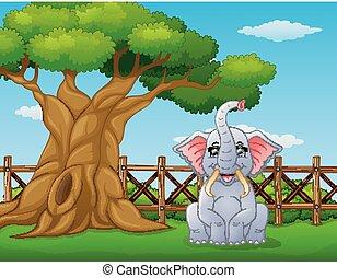 Animal elephant beside a tree inside the fence