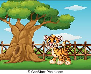 Animal tiger standing beside a tree inside the fence