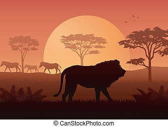 Animals silhouette in sunset at savanah