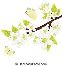 apple-tree branch - Vector illustration of apple-tree branch...