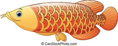 arrowana Free photo asian fish