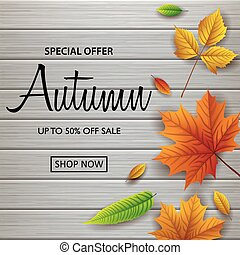 Autumn sale banner with fall leaves on wooden background