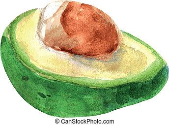 Vector illustration of avocado. Watercolor. EPS 8