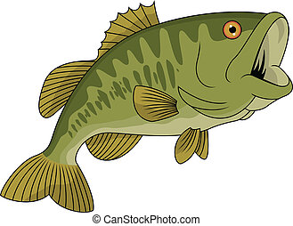 Vector Illustration Of Bass fish