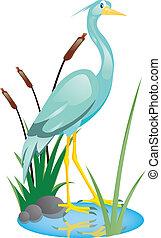 vector illustration of beautiful heron
