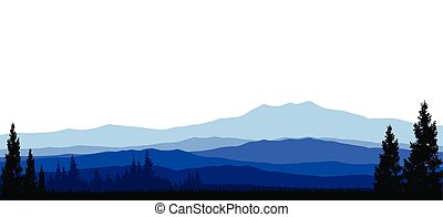 beauty coniferous forests - vector illustration of beauty...