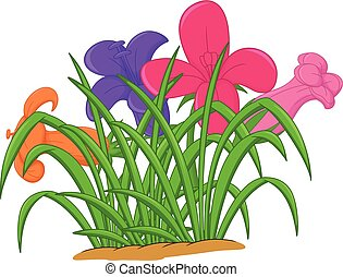 beauty orchid flower cartoon