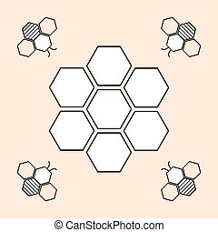Vector illustration of bee and honeycomb on white background
