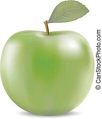 Vector illustration of big green apple