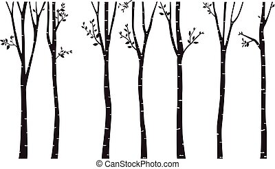 Birch Tree Silhouette Background - vector illustration of ...