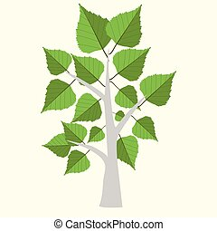 Vector Illustration of birch tree  with two color leaves on light yellow background.