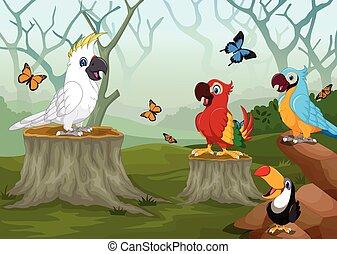 bird cartoon with deep forest