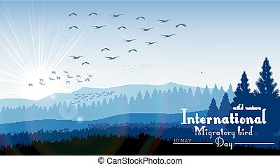 Birds migratory day with mountains
