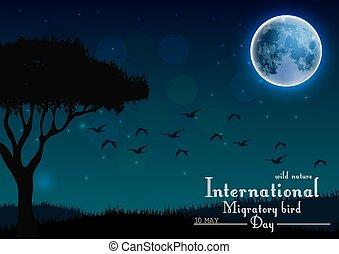 Birds migratory day with tree