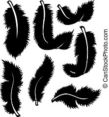 Black feathers set