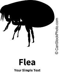 Vector illustration of black fleas