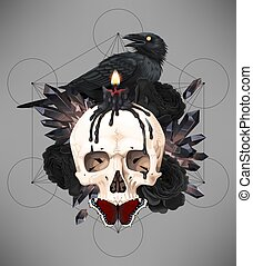 Vector illustration of black raven on the skull