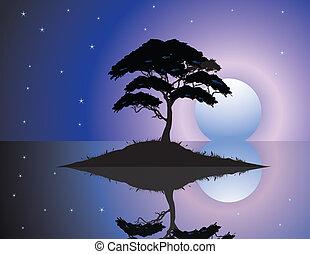 Black silhouette of old tree at nig